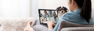 Privatgruppen-Unterricht Online mit der Familie und Freunden